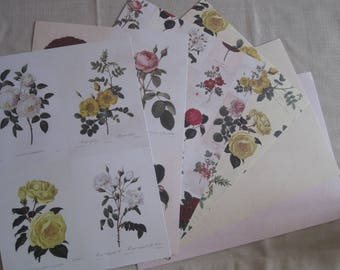 background papers, flowers, vintage, pink, nature