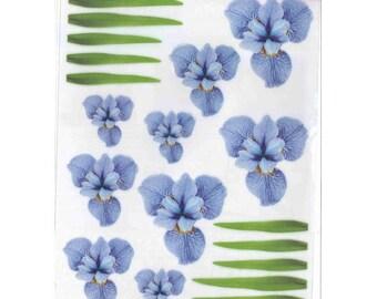 Shapeforming A4 Blue Iris precut - SLSH31