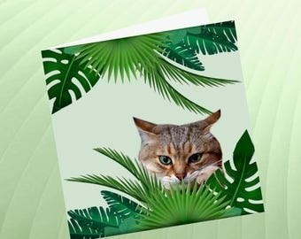 Cat, cat greeting card, cat art: I pout!