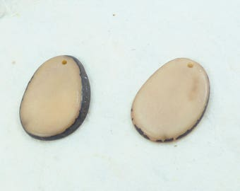 2 slices of tagua beige colors