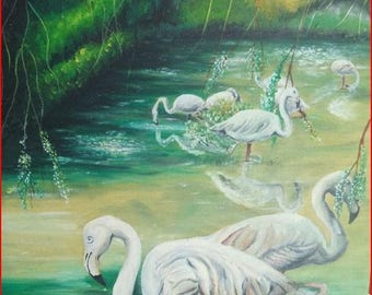 'Dwarf flamingos' painting in oil on canvas frame.