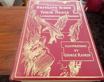 British Birds and their nests hb circa 1910 A Landsborough thomson