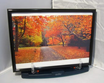 Ken Duncan photograph print Autumn Colours, Mount Wilson, NSW, Australia - framed