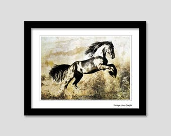 Animal collection - the horse / / Horse