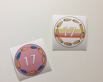 Seventeen SVT Sticker
