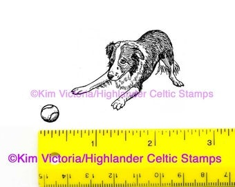 Border Collie crouching Unmounted Rubber Stamp