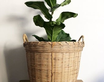Bamboo Basket - Medium