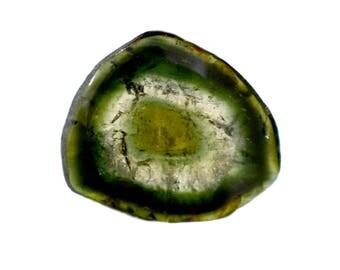 Tourmaline 5.70ct. 14x16 mm 100% Natural Bi-color Tourmaline Slice Beautiful Loose Gemstone - 3796