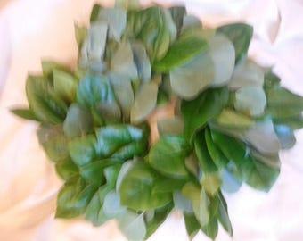 Fresh Salal & Silver Dollar Eucalyptus Wreath