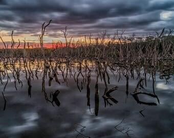 Wetlands Sunset Print
