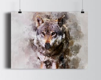 Wolf Digital Drawing Watercolor graphic