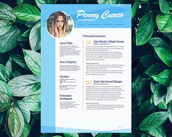Savage Resume Template Venatici