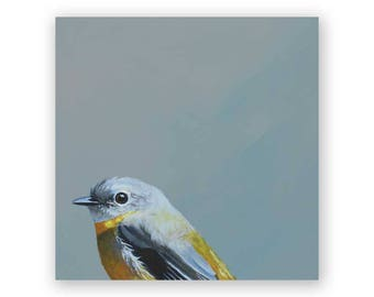 Eastern Yellow Robin 6 x 6 Wings on Wood Decor