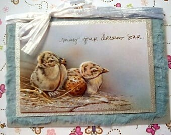 Greetings Card - Chicks in the nest - May your dreams soar - inspirational birthday card