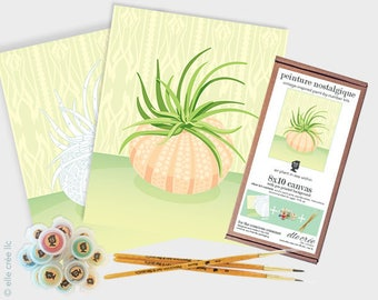 air plant in sea urchin - 8x10 paint-by-number kit