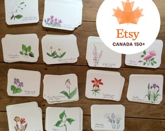 Flowers of the Provinces and Territories cards with envelopes | Set of 13 Cards | Canadian flowers | Greeting cards | Canada 150 | Canada