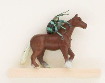 Real Weevil Riding Miniature Horse Insect Art