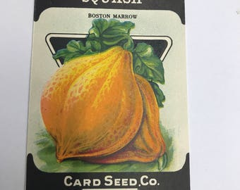 Vintage 1920s Unused Paper Seed Packet Squash