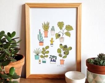 Plants poster, plant illustration, art print, urban jungle illustration, plants, succulents, cactus, monstera, posters plants lovers