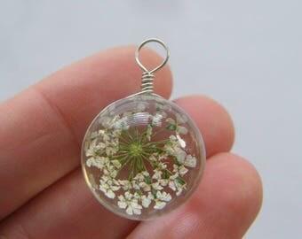 1 Dandelion glass pendant F240