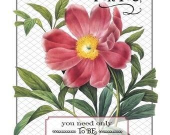 Floral Scriptures Exodus 14:14