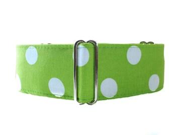 Lime Green Martingale Collar, Polka Dot Martingale Collar, Green Greyhound Collar, Polka Dot Dog Collar, Greyhound Martingale Collar