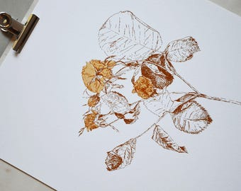 Golden roses limited edition silkscreen print on paper by Gabi Bano
