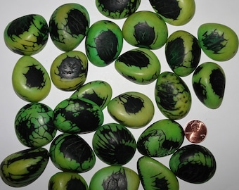 26 Green, Tagua Nut Slices, Top Slices, NOT DRILLED, Organic Beads, Natural Beads, Vegetable Ivory Beads, EcoBeads 22