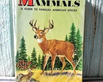 Vintage Childrens Golden Book Nature Guide MAMMALS 1955, Guide to Familiar American Species, Vintage Ephemera
