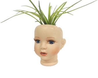 Creepy little blue eyed porcelain doll head planter with air plant.