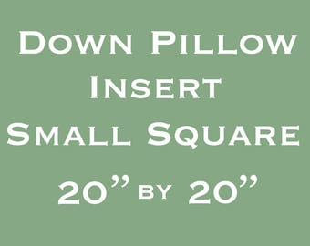 Down Pillow Insert - Small - 20 inches Square