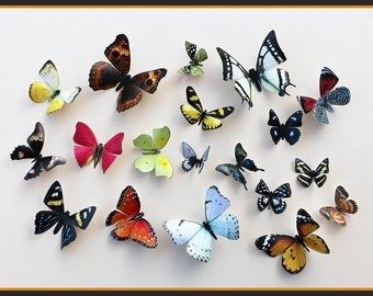 3D Wall Butterflies - 20 Colorful Butterfly Silhouettes, Nursery, Home Decor, Wedding