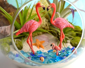 "Flamingo Beach Terrarium Kit ~ 7"" Air Plant Terrarium Kit ~ Coastal Living Beach House Decor ~ 3 Flamingos ~ Beach Gift ~ Christmas Gift"