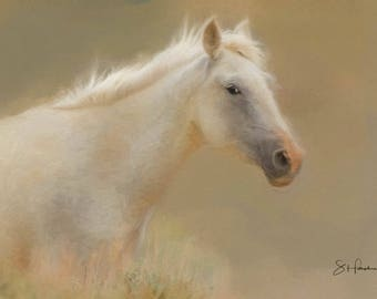 Madeline  - Painting - Wild Mustang of Sand Wash Basin, Wild Horse Painting, sand wash basin wild horses, Colorado Mare
