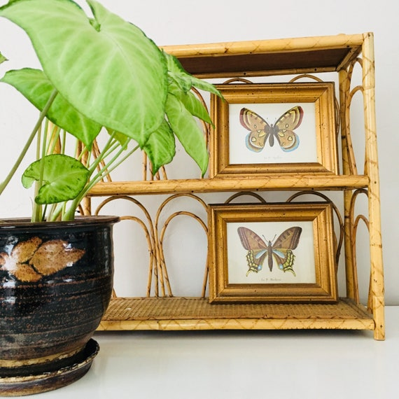 Vintage Butterfly Wall Hangings Set of (2) Gold Framed French Butterfly Botanical Prints Wall Decor