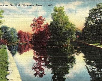 Worcester, Massachusetts, Elm Park - Vintage Postcard - Postcard - Unused (A2)