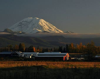 Mt. Rainier from Vashon Island, Mountain View, Farm view, Home decor, Wall decor, Fine Art, Mountain phograph, Mt. Rainier, Sunset Mountain
