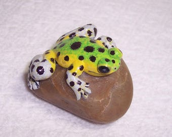 Green Strawberry frog / poison frog / strawberry poison dart frog / hand sculpted frog / sculpted frog on a rock / painted frog / nick knack