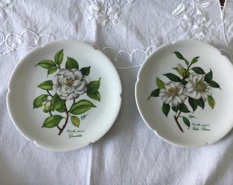 Limoges, Plates, Vintage Plates, Rochard Limoges France, Camillia's, Set of Two