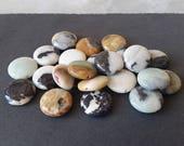 Perles Amazonite Pierre de pièce de monnaie - lot de 22 à 17mm