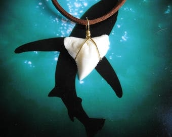 """Shark Tooth Necklace, Modern day Bull Shark tooth, Suede leather cord 20"""", Brass wire wrapped"""