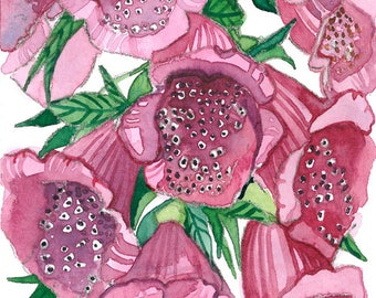ACEO Limited Editions 1/25- Foxglove, Flower art print from a watercolor ACEO painting by Anna Lee, Gift idea for her