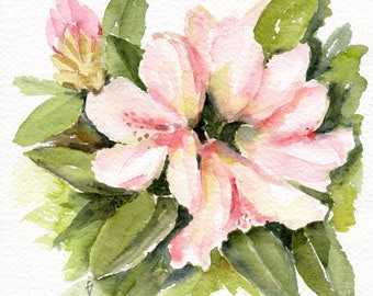 Rhododendrons, Original watercolour painting, rodho painting,  pink rodhies, rhododendron flower