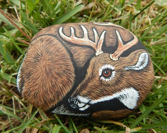Whitetail Deer Painting, Buck Deer Painted Rock, Whitetail Deer Painted Rock Art