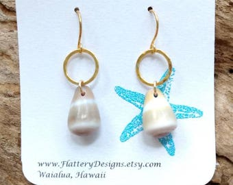 Hawaiian Cone Shell Earrings