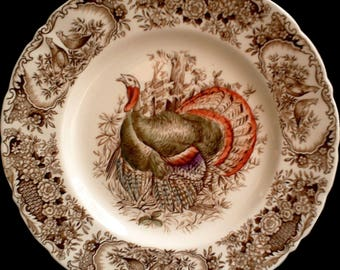 Turkey Dinner Plate, China, Dishes, Johnson Brothers Wild Turkey Windsor Ware Native American Thanksgiving
