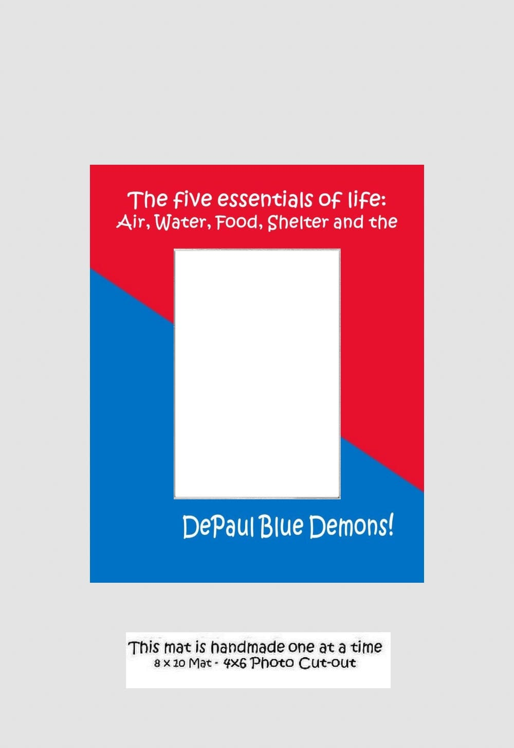 Depaul University Picture Frame Photo Mat Select From