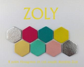8 small hexagons diameter 2cm 7 colors