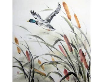 Watercolor Japanese Brush Painting Ink Painting Sumi-e Ink Suibokugan paper Japanese art Asian art Flower and Bird Large  Duck in the reeds