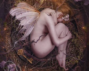 mystical fantasy fairy pixie sleeping art print